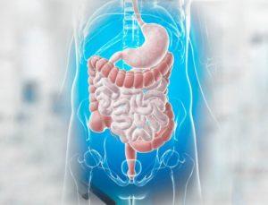 Что лечит гастроэнтеролог?